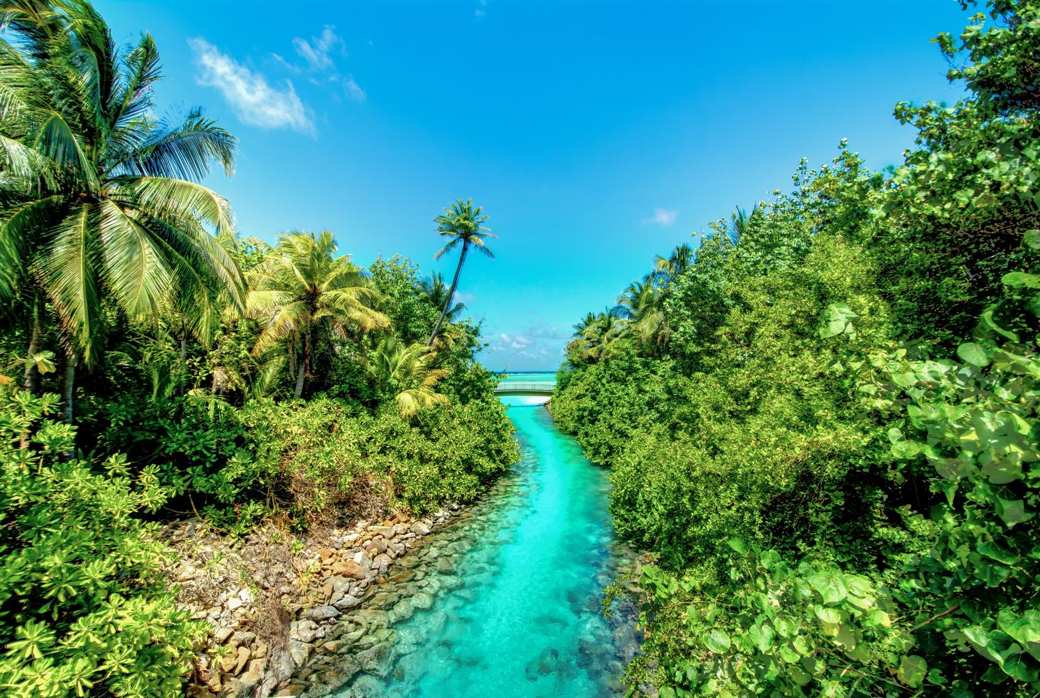 seychelles 2017 reg img 5