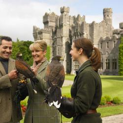 Animal Lovers: Ashford Castle