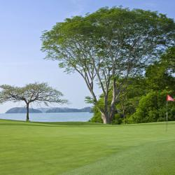 Land Pursuits: Westin Golf Resort and Spa Playa Conchal