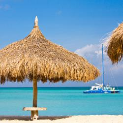 Wellness Pursuits: Hyatt Regency Aruba Resort and Casino