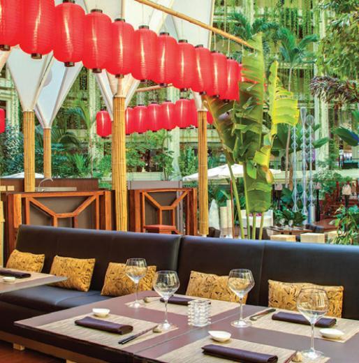 Culinary Pursuits: Paradisus Cancún