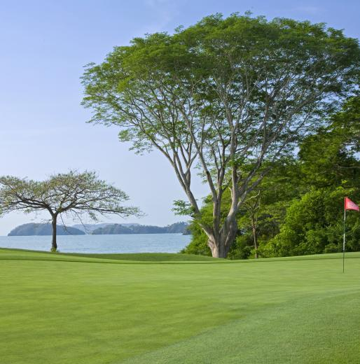 Land Pursuits: Westin Golf Resort and Spa Playa Conchal