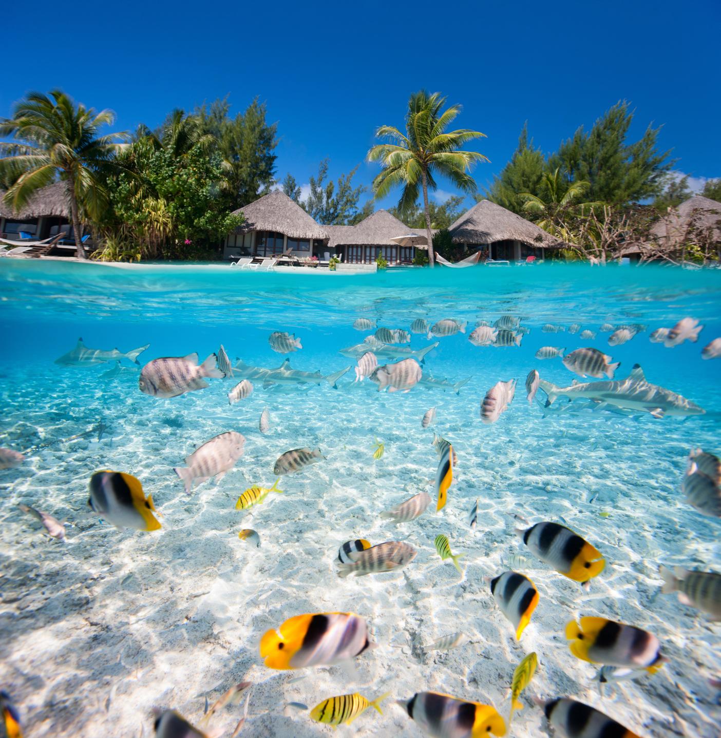 TIH - Tikehau Atoll